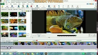 Videopad video editor software blur face tutorial clipzui create slideshow video using videopad ccuart Image collections