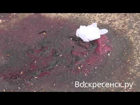 18+ Видео с места убийства в Воскресенске