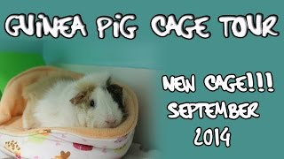 First **official** Guinea Pig Cage Tour | September 2014