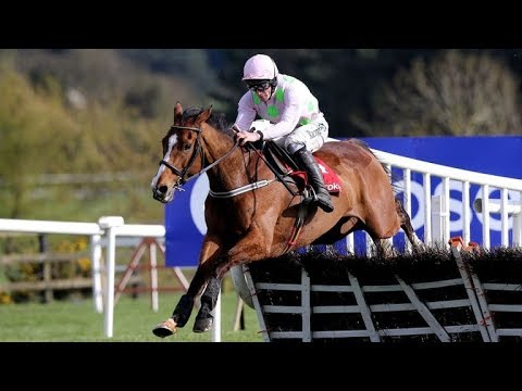 Faugheen - 2018 Punchestown G1 Ladbrokes Champion Stayers Hurdle (Build Up, Race & Reaction)