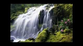 R. Schumann: Fantasiestücke Op. 73