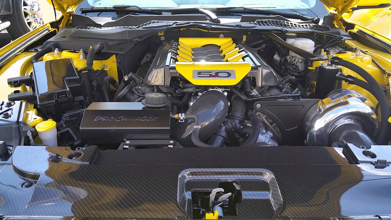 2015 Mustang Gt Procharger Startup Youtube