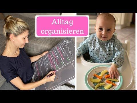 Organisation ist alles - Alltag und Küche neu organisieren I Breifrei und BLW I AllesClärchen