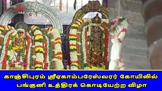 காஞ்சிபுரம் ஸ்ரீஏகாம்பரேஸ்வரர் கோயிலில் பங்குனி உத்திரக் கொடியேற்ற விழா | Panguni Uthiram | Britain