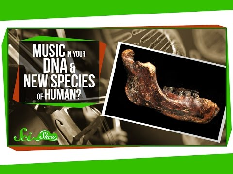 Music in Your DNA and A New Species of Human?