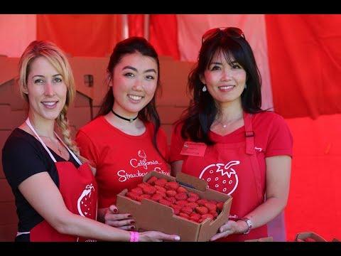 2017 California Strawberry Festival