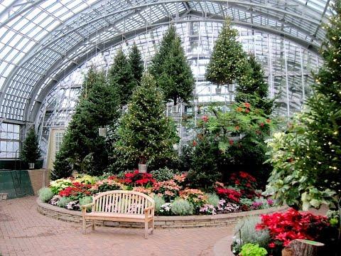 Garfield Park Conservatory :  Christmas Flower Show   2016