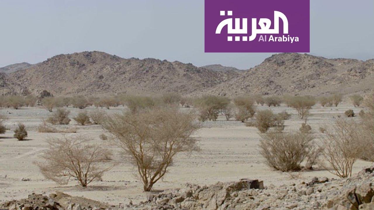 على خطى العرب: العشاء لحماً وقمحاً - الحلقة 13 - YouTube