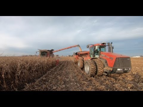 Dick Lavy Farms - 2017 Corn Harvest in the November Mud