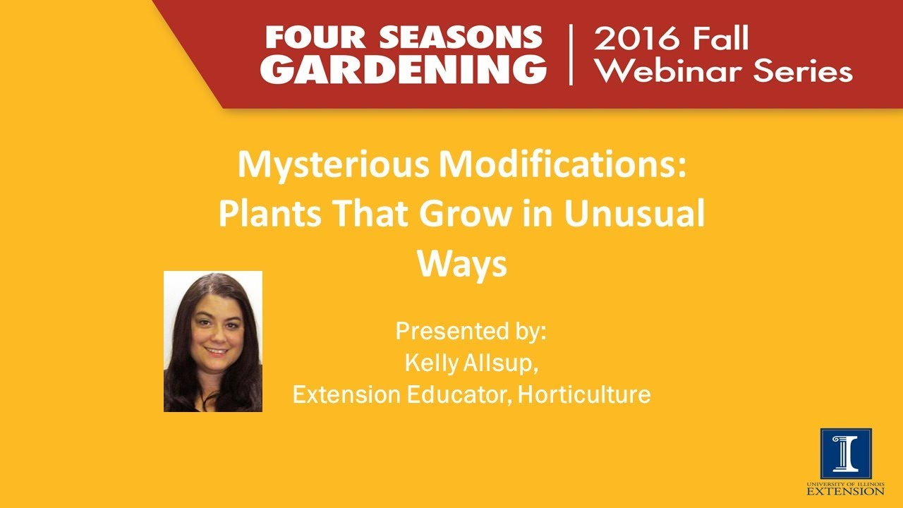 Four Seasons Gardening Series   Plant Adaptations
