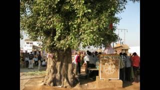 Maa Umiya Umiya Mahotsav 2009  unjha kadva patidar kuldevi narendra modi ma umiya .mp4
