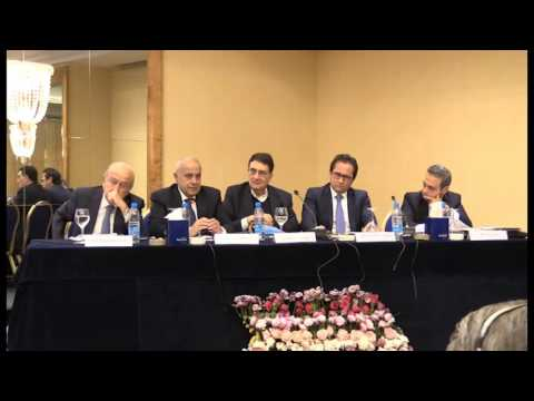 East Mediterranean Gas Prospects: Production and Markets Panel I (3)