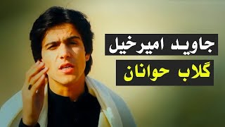 Javed Amirkhil - Gulab Zwanan جاوید امیرخیل - گلاب حوانان