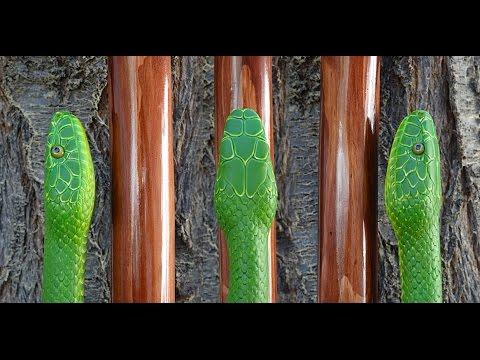 Green Mamba And Twin Spot Walking Stick #49