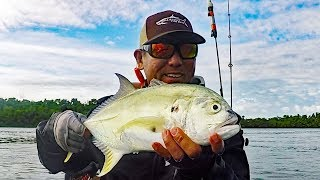 Finding Pilchards And Fish Close To Home - Boca Chica Channel