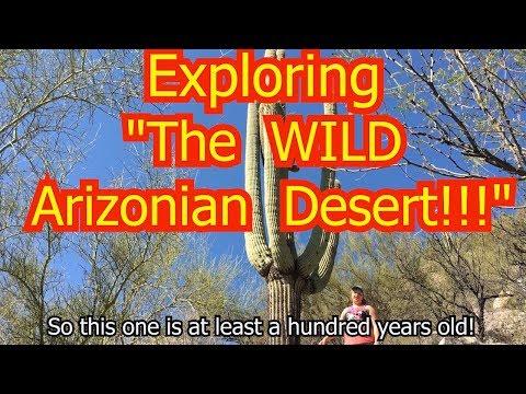 HIKING SABINO CANYON!!!!  | TUCSON ARIZONA 02/22/18 | Full Time RV Living