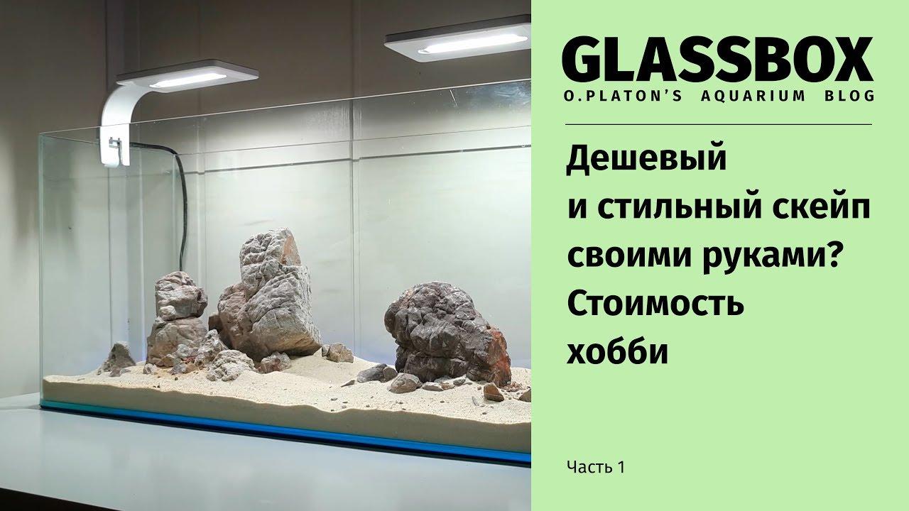 1 - Дешевый и стильный аквариум своими руками. Стоимость хобби.