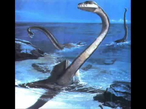 傳說中的尼斯湖水怪,在西歐地區發現較多。 牠們的特色在於小頭,存活年代約2億年前至6600萬年前,從租借倉庫的電梯,恐龍的近親是空中一霸 - YouTube