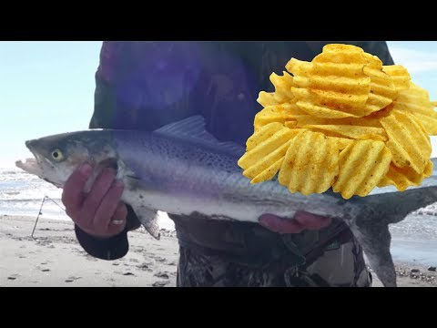 CATCH And COOK Panko/ Salt And Vinegar Chip Crumbed Fish And Chips