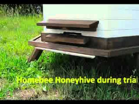Bee Hives for Sale - Natural Honey making at Home - YouTube - photo#47