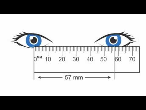 image relating to Printable Millimeter Ruler for Eyeglasses referred to as How in direction of Evaluate Pupillary Length (PD)