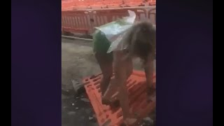 Funny Girl Fails#18 Tinkerbell Down