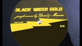 Black water Gold 12 inch Jungle remix by DJ Devil and DJ Maurice