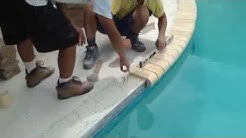 Pool Deck Travertine Install St. Petersburg, Florida - Coping Install