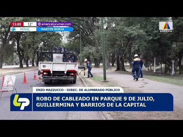 Robo de cableado en parque 9 de Julio, en el parque Guillermina y en distintos barrios de la capital