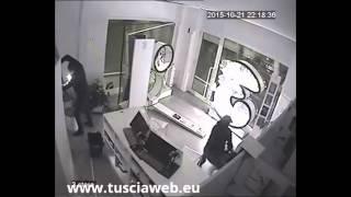 Guarda i ladri in azione  - Sfondano vetrina e rubano cellulari