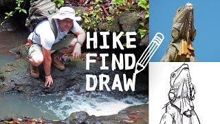 Hiking Termales del Bosque & Drawing an Iguana