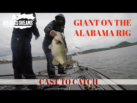 Alabama Rig Giant Bass - Rich Fuchs Personal Best On The Hog Farmer Harvester