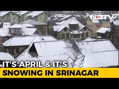 Schools, Colleges Close After Rare April Snowfall In Jammu And Kashmir