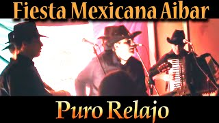 "Video Fiesta Mexicana con ""Puro Relajo"" en Aibar (Navarra) - Febrero 2014 download MP3, 3GP, MP4, WEBM, AVI, FLV Agustus 2018"