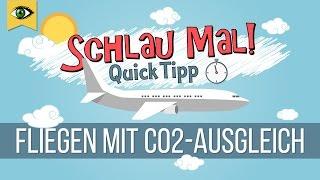 Fliegen mit CO2-Ausgleich/CO2-Kompensation - sinnvoll für die Umwelt oder Ablasshandel? - Schlaumal