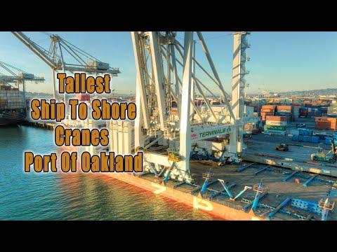 Port Of Oakland Tallest Cranes 2021