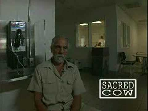 tommy chong prison interview part 1