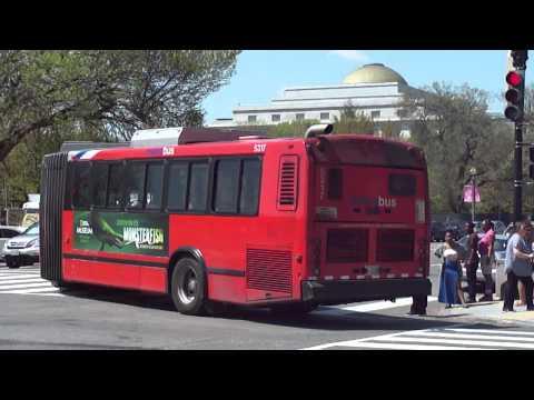 Washington Metropolitan Area Transit Authority Neoplan #5317