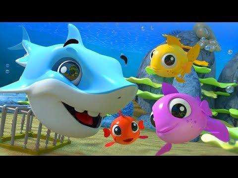 tres pequeños peces | canción de pescado | canciones infantiles | Three Little Fish | Poem For Kids