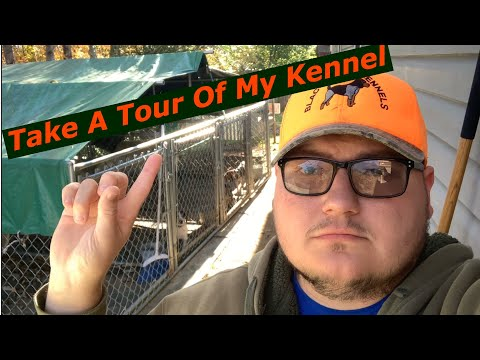 Take A Tour Of My Kennel!