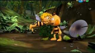 пчелка мая- неожиданная находка