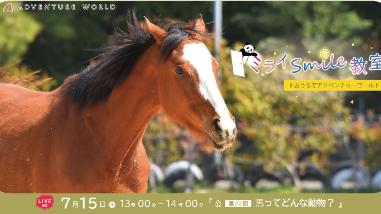 ミライSmile教室 第22回『~馬ってどんな動物? ~』