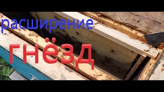 ВЕСЕНЯЯ расширение пчелиных СЕМЕЙ
