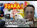 Love Bird Mania Juara  Best Love Bird Situbondo Hendry Susanto  Mp3 - Mp4 Download