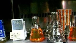 低粘度・流し込みOK&ガラス容器が割れない--低収縮なレジンは-柔らかい...