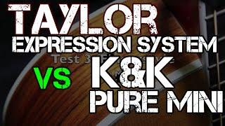 Taylor Expression System VS K&K Pure Mini