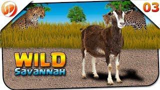 Wild Savannah #03 - Vida de Cabra! Treta doida com o Buffalo - ROBLOX