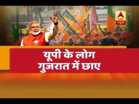 Gujarat Assembly Elections: Watch Vadodara's Uttar Pradesh connection