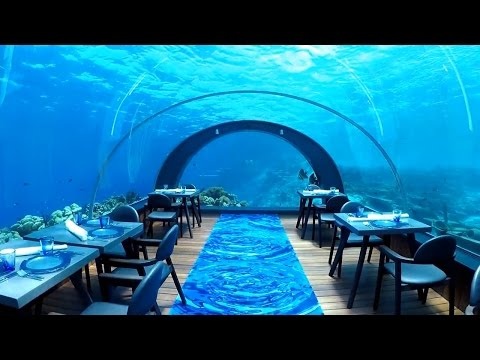 Overwater bungalows and underwater dining in the Maldives!