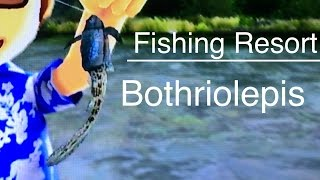 Let's Play: Fishing Resort Wii, Bothriolepis